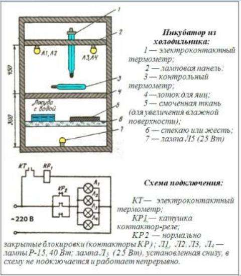 инкубатор своими руками чертежи с размерами из холодильника