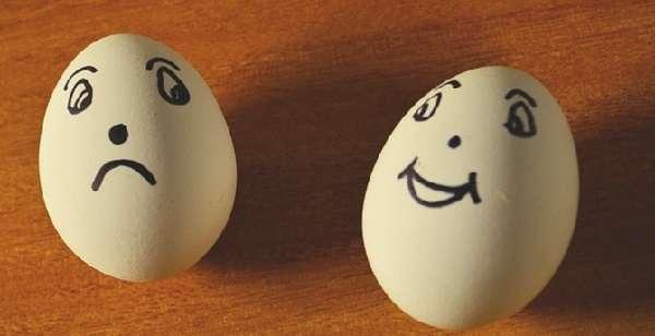 как выбирать яйца для инкубации