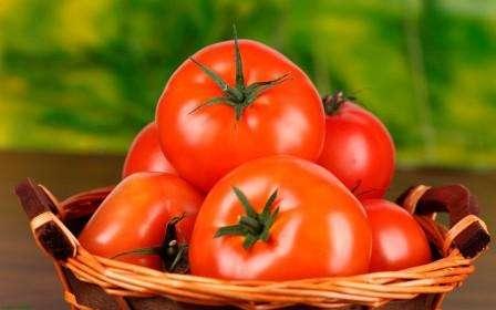 Семена томатов в открытом грунте