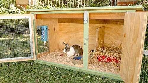 Строительство семейной клетки для кроликов требует некоторых навыков