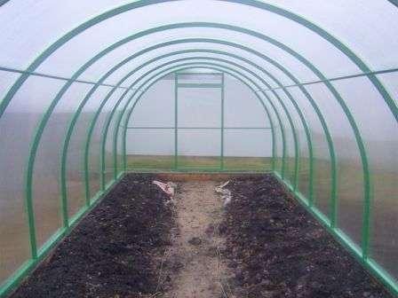 Древесная зола также полезна для помидоров, а известь нейтрализует кислую реакцию, вызываемую торфом.