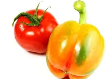 Вы также найдете здесь советы опытных овощеводов по посадке и выращиванию рассады томатов и перца.