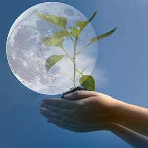 Ввиду этого сомнения многих земледельцев по поводу эффективности лунного календаря лишь укрепляются, становясь нерушимой стеной.