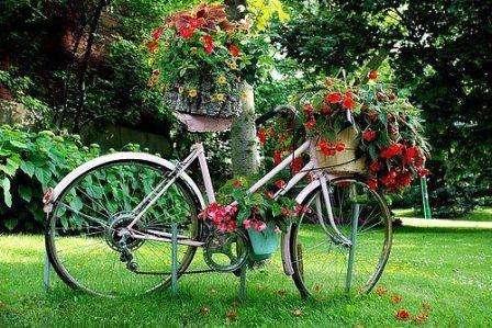 Уют и хорошее настроение подарят умело организованные цветники, клумбы, альпинарии, рокарии.