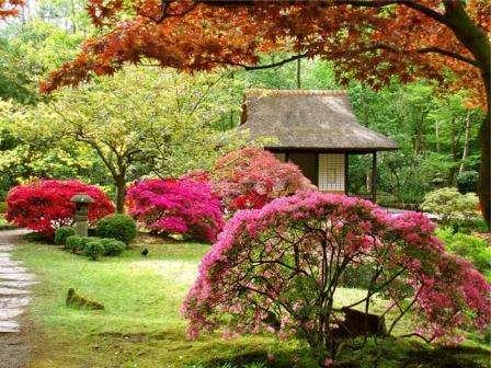 Японский — скромность и минимализм. Главные элементы: водоем, деревянный мостик, вечнозеленые растения, каменные дорожки.