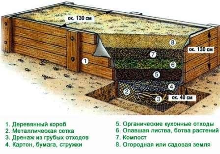 Важно позаботиться, чтобы все заложенные вещества как можно быстрее разлагались. Важным шагом в этом будет частый полив.
