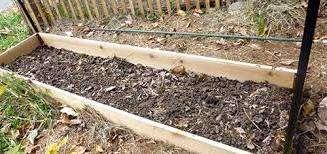 Перед посадкой малины желательно внести на участок удобрения. Это может быть перегной в сочетании с калием и суперфосфатом.