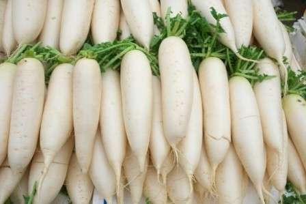 Дайкон семена купить в интернет-магазине недорого