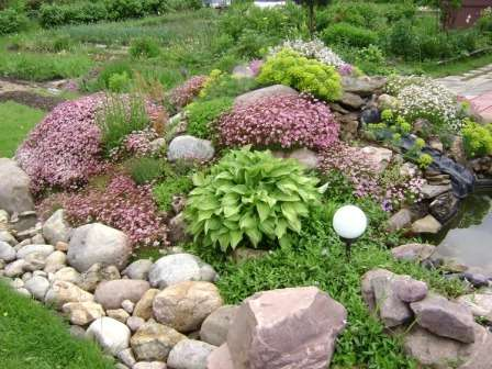 Подобрав для альпийской горки цветы с разным периодом цветения, вы можете обеспечить красоту цветника на протяжении всего сезона.