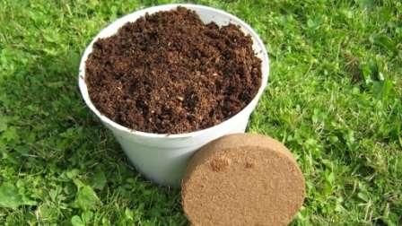 Как использовать кокосовые брикеты для рассады?