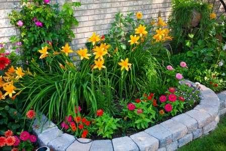 Сегодня мы научим вас создавать цветники и клумбы своими руками на даче. Фото цветущих все лето посадок прилагаются.