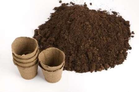 Торф — это один из важнейших компонентов грунта для домашнего выращивания растений.