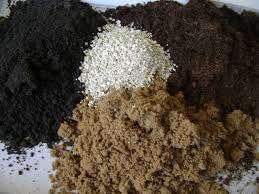 Песок и опилки — это лучшие разрыхлители почвы.