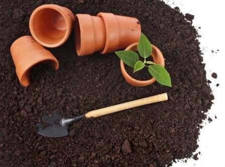 На этой странице нашего сайта для фермеров, мы расскажем, как приготовить питательную почвосмесь для рассады.