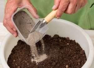 Все компоненты следует тщательно смешать, чтобы получилась однородная почвосмесь