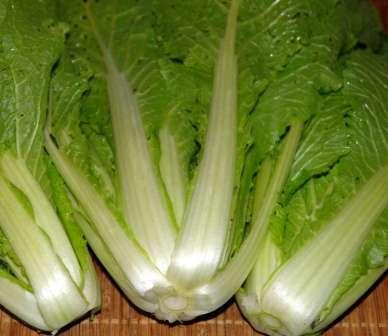 Чтобы гордиться урожайностью своей китайской капусты, позаботьтесь о подкормках для нее.
