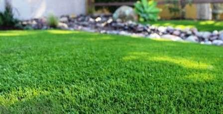Но как посеять газонную траву правильно?