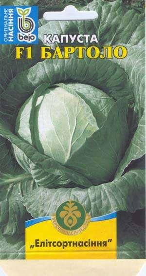 Чтобы заготовить кочанов капусты впрок, необходимо подобрать те сорта, которые будут долго храниться с минимальной потерей качества и вкуса.