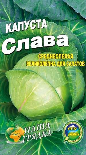 Однако у тех, кто ставит во главу угла вкусовые качества овоща, на участке непременно есть грядки с отечественными сортами.