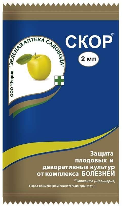 ервичная обработка призвана защитить смородину от распространенных проблем: клещ, тля, мучнистая роса,