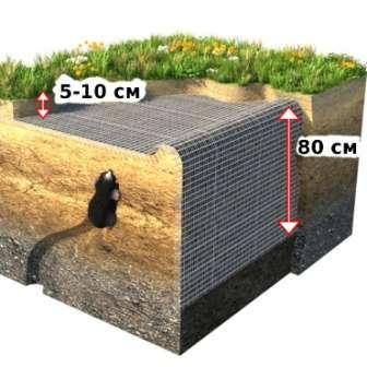 Чтобы крот никогда не проник на ваш дачный участок, создайте по его периметру подземное ограждение.