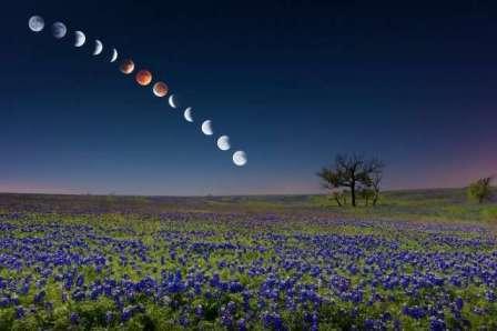 Вначале следует упомянуть о том, что не все огородники и садоводы считают необходимым учитывать движение Луны на небе в своем ежегодном графике земельных работ.