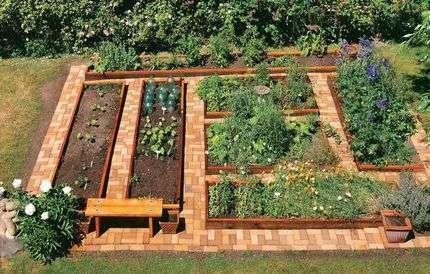 Секреты получения богатого урожая при минимальных затратах сил и времени издавна интересуют огородников.