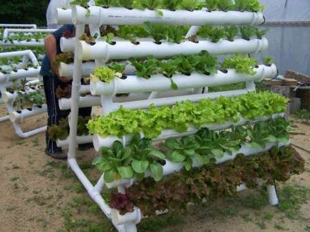 Вертикальные грядки своими руками — отличный выход из такой ситуации, если хочется вырастить больше растений, чем вмещает площадь.