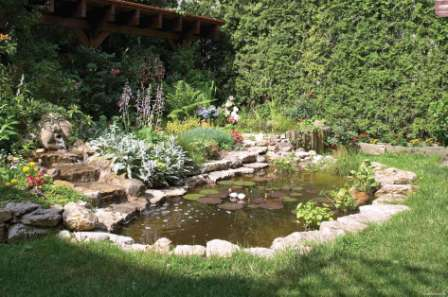 Подбирая растения для рокария и альпинария, избегайте тех, что быстро разрастаются. С их участием композиция быстро испортится.