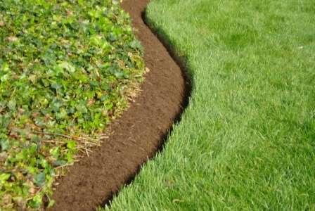 Зеленая трава в междурядьях создает уют на участке с овощами.