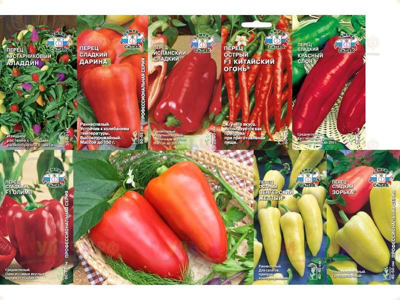 как посадить на рассаду семена перца рамиро