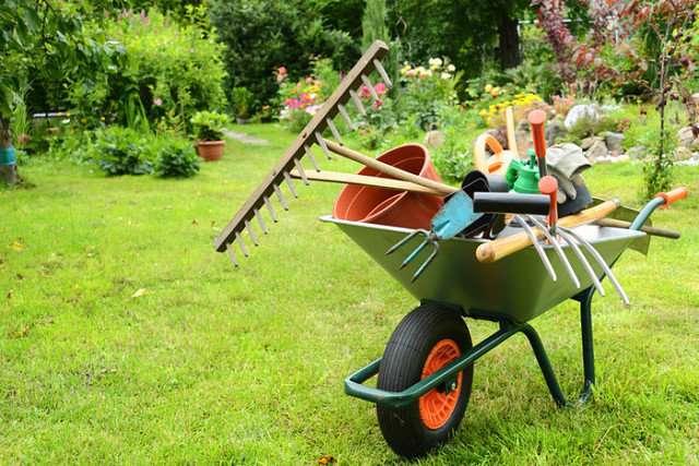 лунный посевной календарь на 2019 года садовода и огородника