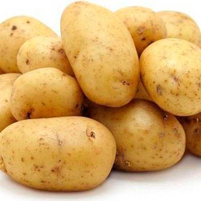 семенной картофель гала описание сорта