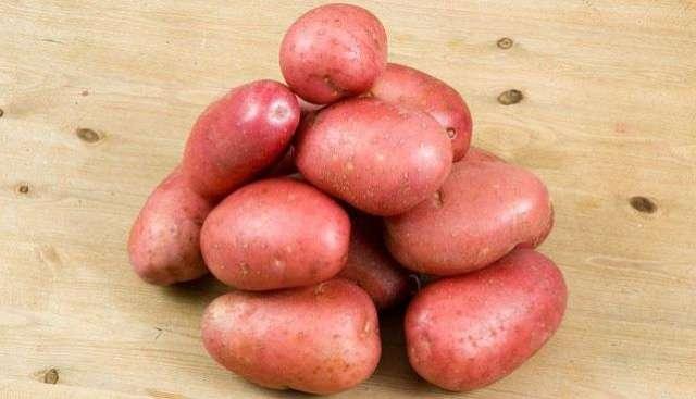 сорт картофеля журавинка характеристика