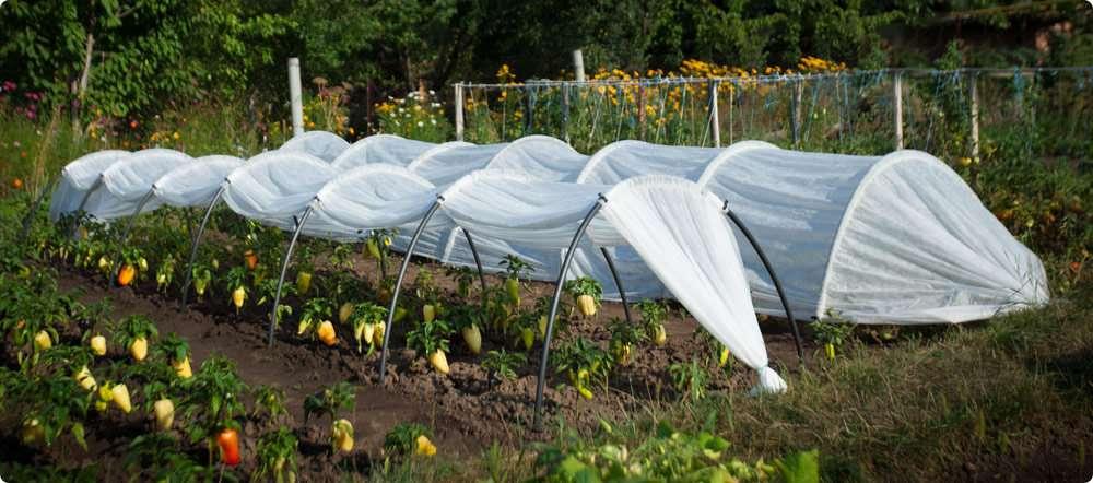 агроспан укрывной материал характеристики цена