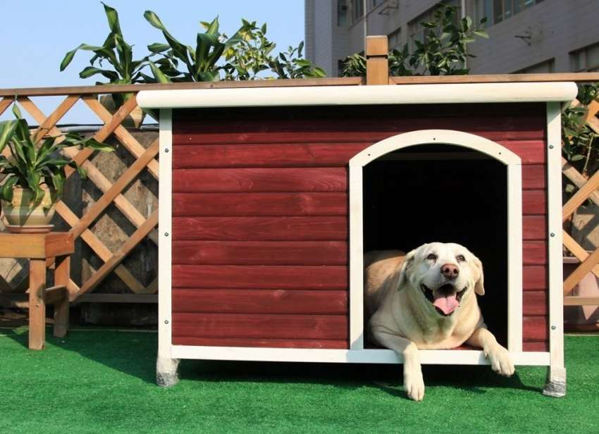 как сделать простую будку для собаки