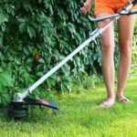 Рейтинг триммеров для травы