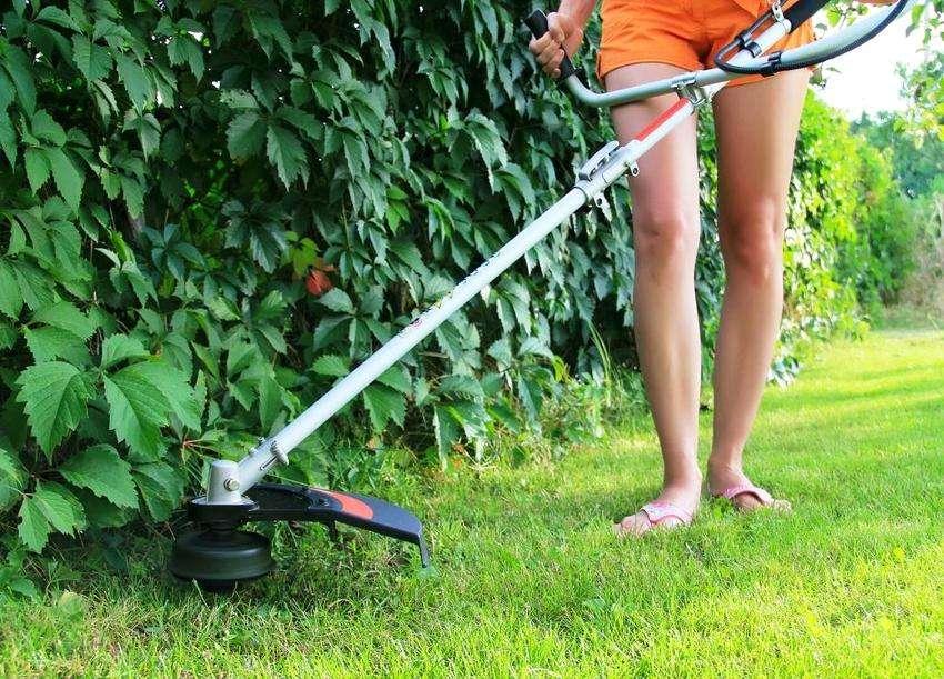 электрический триммер для травы какой лучше отзывы