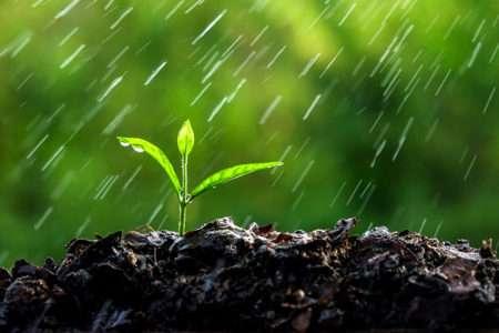 как сделать дождеватель