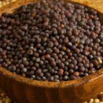 Норма высева горчицы на сидерат: для получения семян или на корм животным