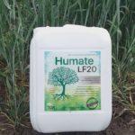 Гумат натрия – органический стимулятор роста культур. Применение на огороде в жидкой и порошковой форме