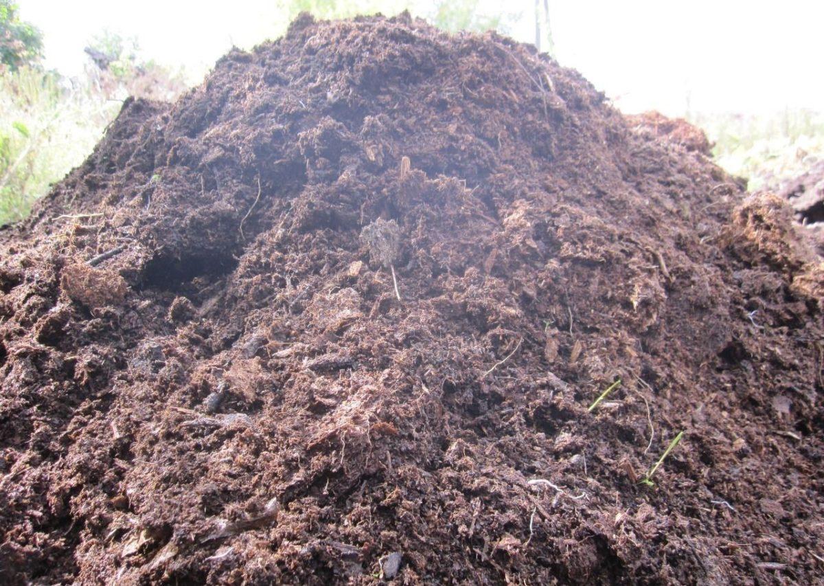 когда вносить калийные удобрения в почву