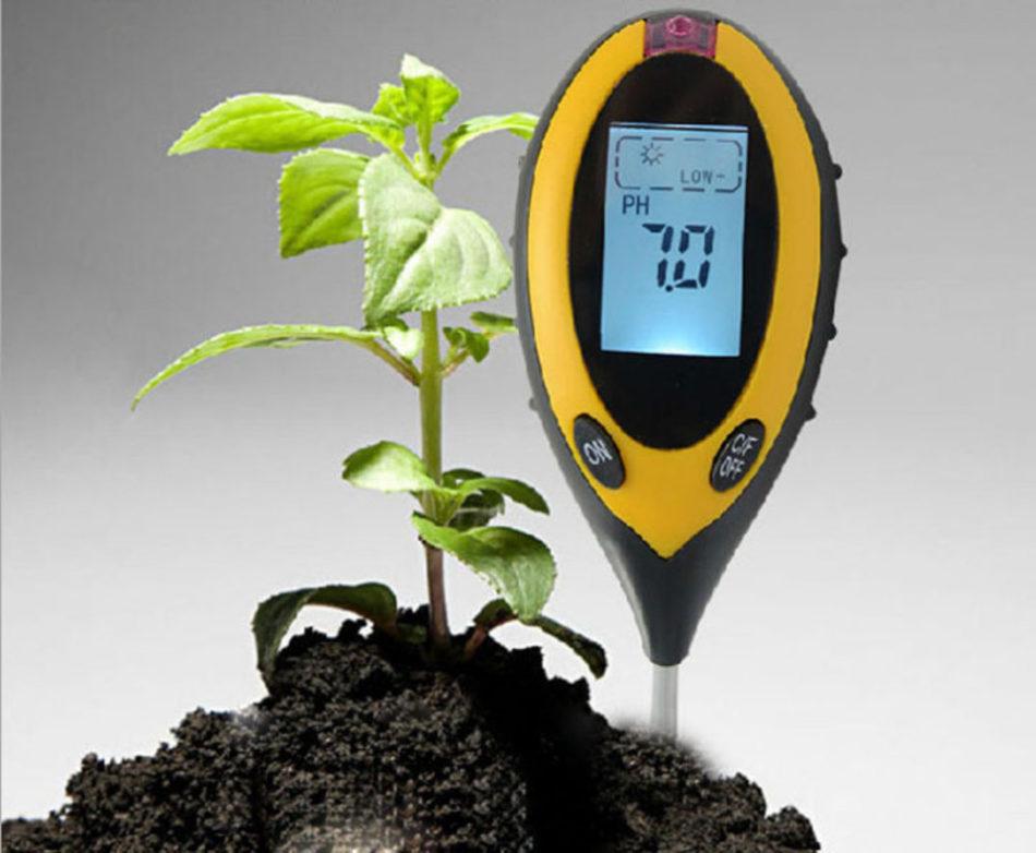 Кислая почва – что делать, какие удобрения вносить, сколько и когда. Как проверить кислотность грунта