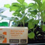 Янтарная кислота для цветов – применение и полезные свойства, отзывы