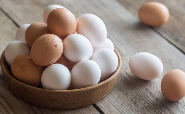 Как выбирать яйца в магазине