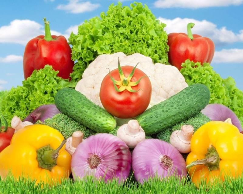 Приобретение овощей у надежного производителя – верное решение