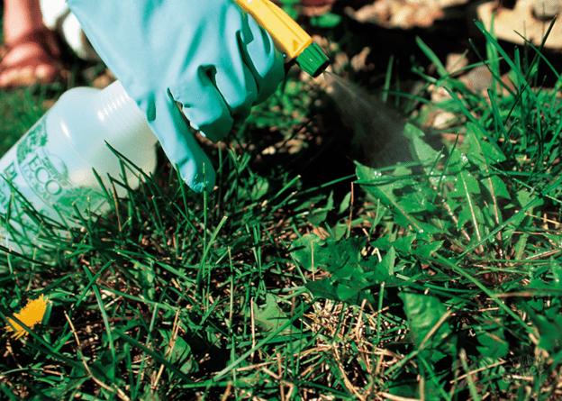 Преимущества использования гербицидов