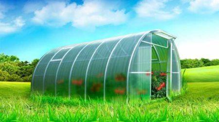Выбор цвета теплицы - выбор урожайности. Применение цветного сотового поликарбоната
