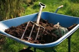 Особенности удобрений для садовых и огородных культур