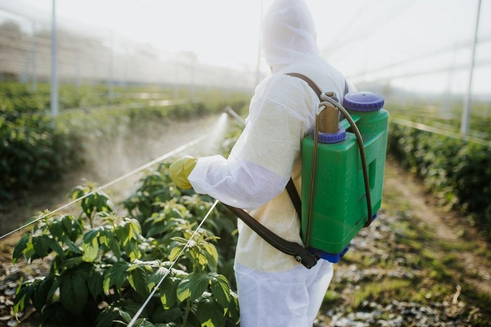 Применение энтомофагов - прогрессивный способ защиты растений